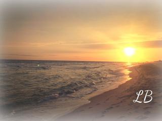 New! Laguna Beach Refuge! Quiet! - Laguna Beach vacation rentals