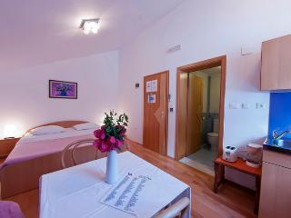 Viola aptartment at beach Villa, Zaton bay - Zaton vacation rentals