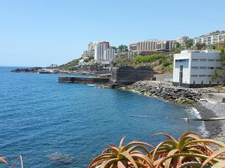 Palms Palace Apartment - Funchal vacation rentals