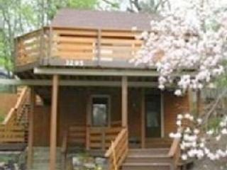 Renovated Cottage, Historic Area - Muskegon vacation rentals