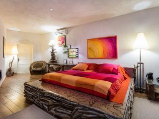 Suite Bois Flotté - Narbonne vacation rentals