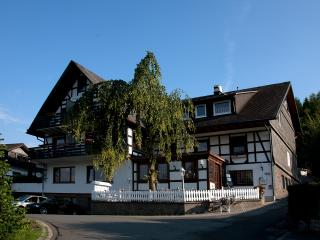 Bright 12 bedroom Schmallenberg Bed and Breakfast with Central Heating - Schmallenberg vacation rentals