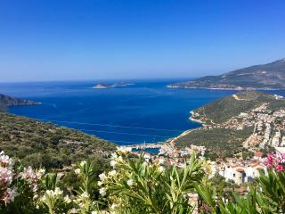 Romantic 1 bedroom Kalkan Condo with A/C - Kalkan vacation rentals