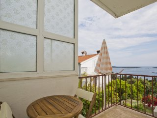 Apartment Borki 1 - Hvar vacation rentals