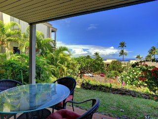 2 bedroom Apartment with Private Outdoor Pool in Wailea - Wailea vacation rentals