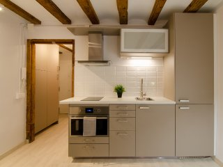 Cosy apartment near Raval - Barcelona vacation rentals