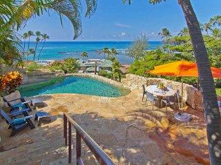 Wailele Estate - w/ pool, hot tub, great location! - Diamond Head vacation rentals