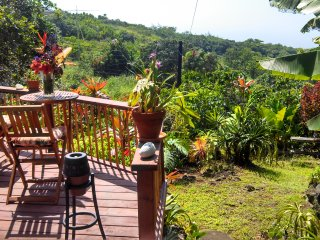 Sunny 1 bedroom Kealakekua Cottage with Deck - Kealakekua vacation rentals