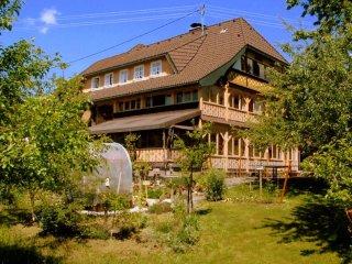 Vacation Apartment in Bernau im Schwarzwald - 670955 sqft, quiet, renovated, bright (# 8884) - Bernau im Schwarzwald vacation rentals