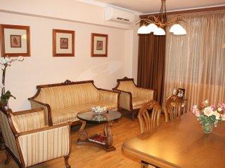 2 Bedroom Apartment On Nalbandyan street - Yerevan vacation rentals