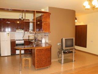1 Bedroom Apartment on Tumanyan street - Yerevan vacation rentals