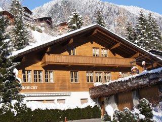 Ferienwohnung mit Sicht auf die Eigernordwand - Grindelwald vacation rentals