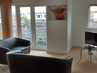 Modern City Centre Apartment - 2 Double Bedrooms - Newcastle upon Tyne vacation rentals