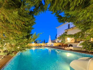 Ark Luxury Villa with Private Pool - Mouzaki vacation rentals