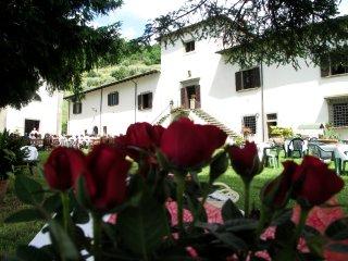 Villa Grassina Trilocale 2 - Pelago vacation rentals