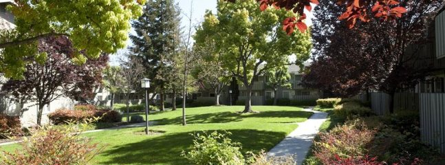 Furnished 1-Bedroom Apartment at Almaden Expy & Cherry Ave San Jose - Image 1 - San Jose - rentals