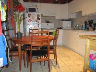 Perfect 1 bedroom Condo in Montreal - Montreal vacation rentals