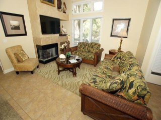 Comfortable Villa with Internet Access and Private Outdoor Pool - Hilton Head vacation rentals