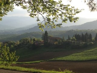 The Villa of the Angels Ideal for Celebrations - Montone vacation rentals