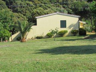 appartamento in zona tranquilla - Capoliveri vacation rentals