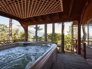 "Amazing ""Sunset Perch"" Views  with spa - Idyllwild vacation rentals"