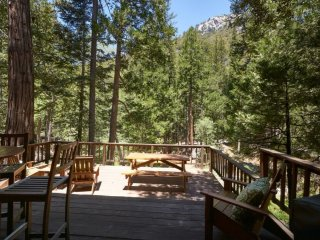 Mountain view cabin in Fern Valley on the creek with amazing views - Idyllwild vacation rentals
