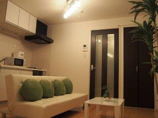 Near Shinjuku 5people max awesome room!!! - Nakano vacation rentals