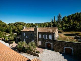 Domaine viticole dans un écrin de verdure  4 gîtes - Fonties-d'Aude vacation rentals