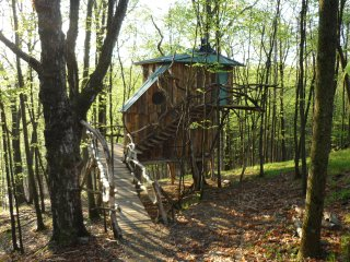 Beautiful 2 bedroom Tree house in West Pawlet - West Pawlet vacation rentals