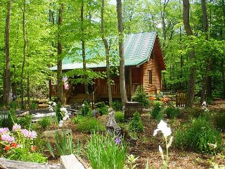 Creekside Cabin w/Hot Tub, WiFi, Fire Pit! Lower Summer Rates Available! - Todd vacation rentals