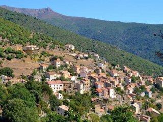 Location estivale studio à ASCO en Haute Corse - Asco vacation rentals