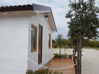 Nice Farmhouse Barn with Internet Access and A/C - Nova Siri vacation rentals