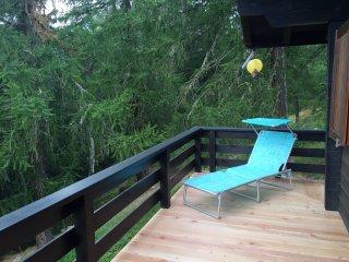 Gemütlichkeit direkt an der Piste und am Waldrand - Bellwald vacation rentals