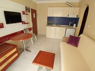 Nice Condo with Internet Access and Garden - Marmaris vacation rentals