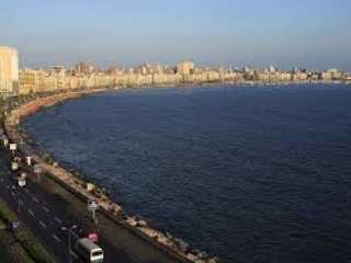 My place is close to restaurants and dining and th - Alexandria vacation rentals