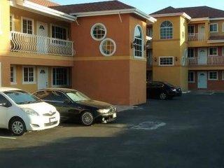 Clean n Comfy 2bed 2bath Apartment - Kingston vacation rentals