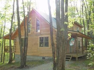 Lost Paddle - Hico vacation rentals