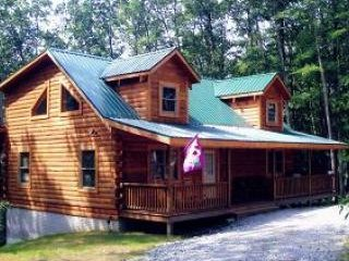 3 bedroom Cabin with Fireplace in Hico - Hico vacation rentals