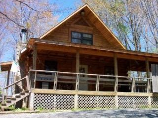 Perfect 3 bedroom Cabin in Hico - Hico vacation rentals