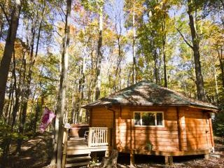 1 bedroom Cabin with Microwave in Hico - Hico vacation rentals