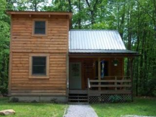 West Virginian - Hico vacation rentals