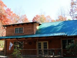 Perfect Cabin with Internet Access and Fireplace - Hico vacation rentals
