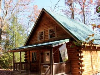 Convenient 1 bedroom Hico Cabin with Fireplace - Hico vacation rentals