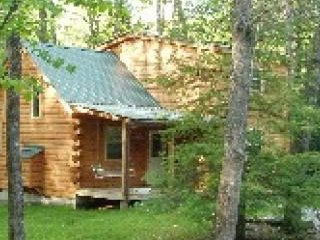 Cozy Cabin with Internet Access and Fireplace - Hico vacation rentals