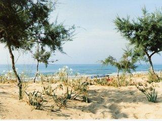 B&B Raffaella-Tre Fontane Tp Sicily Camera Glicine - Tre Fontane vacation rentals