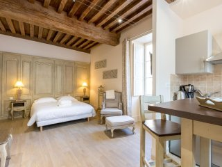 STUDIO DE CHARME CENTRE VILLE - Beaune vacation rentals