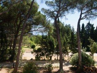 Chateau Eydoux -Le Lieutenant - Loriol-du-Comtat vacation rentals