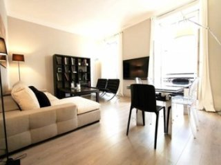Spacious Two Bedroom Apartment - Cannes vacation rentals