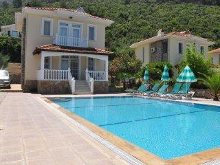 Dogan  Villa - Hisaronu vacation rentals
