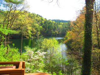 Luxury 4 BR-3BA Lakefront Mountain Townhome - Sapphire vacation rentals